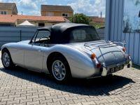 Austin Healey 3000 BJ8 MKIII - <small></small> 65.000 € <small>TTC</small> - #7