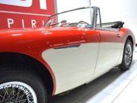 Austin Healey 3000 MK2 BJ7 - <small></small> 59.900 € <small>TTC</small> - #14