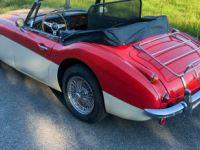 Austin Healey 3000 Mk3 (Phase 2) - Prix sur Demande - #5