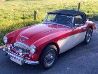 Austin Healey 3000 Mk3 (Phase 2) - Prix sur Demande - #8