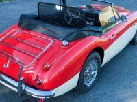 Austin Healey 3000 Mk3 (Phase 2) - Prix sur Demande - #9