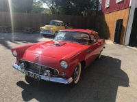 Ford Thunderbird 1955 Occasion