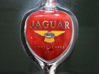 Jaguar XK 140 Roadster - <small></small> 119.900 € <small>TTC</small> - #50