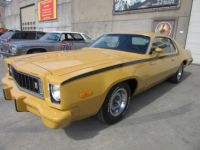 Plymouth Road runner Roadrunner - <small></small> 26.500 € <small>TTC</small> - #16