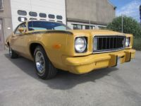 Plymouth Road runner Roadrunner - <small></small> 26.500 € <small>TTC</small> - #33