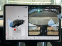 Tesla Model 3 Standard RWD Plus - <small></small> 41.900 € <small>TTC</small> - #12