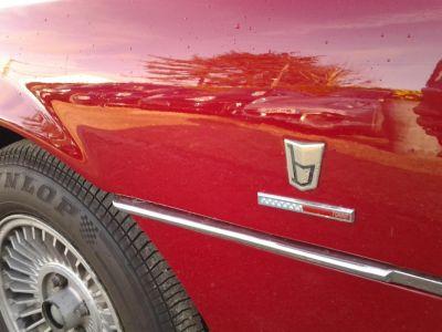 Alfa Romeo MONTREAL COUPE - <small></small> 69.500 € <small>TTC</small>