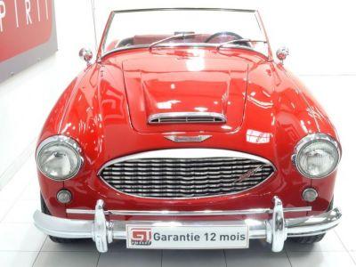 Austin Healey 3000 MK1 BT7 - <small></small> 59.900 € <small>TTC</small> - #5