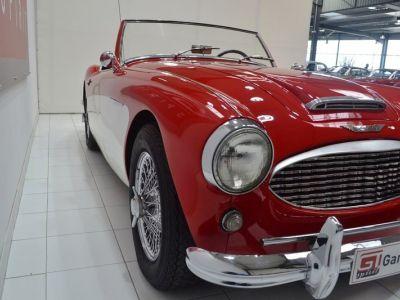 Austin Healey 3000 MK1 BT7 - <small></small> 59.900 € <small>TTC</small> - #15