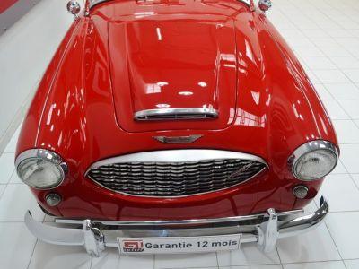 Austin Healey 3000 MK1 BT7 - <small></small> 59.900 € <small>TTC</small> - #16