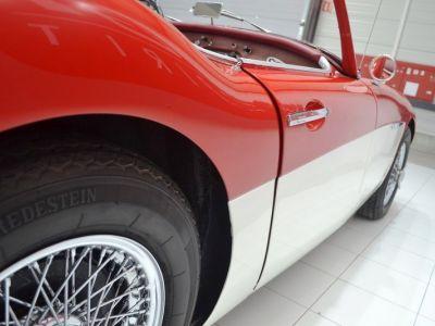 Austin Healey 3000 MK1 BT7 - <small></small> 59.900 € <small>TTC</small> - #27