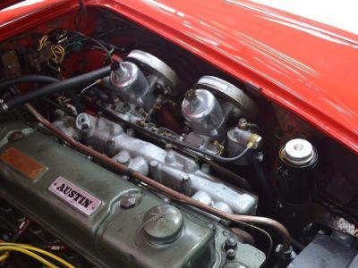 Austin Healey 3000 MK1 BT7 - <small></small> 59.900 € <small>TTC</small> - #43