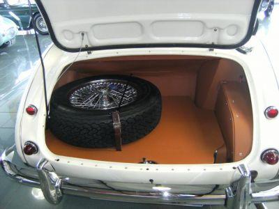 Austin Healey 3000 MK3 BJ8 - <small></small> 79.900 € <small>TTC</small> - #19
