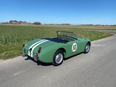 Austin Healey Sprite Frogeye 1960 - <small></small> 29.500 € <small>TTC</small> - #2