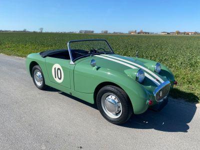 Austin Healey Sprite Frogeye 1960 - <small></small> 29.500 € <small>TTC</small> - #3