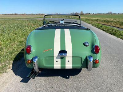 Austin Healey Sprite Frogeye 1960 - <small></small> 29.500 € <small>TTC</small> - #8