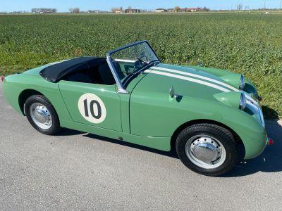 Austin Healey Sprite Frogeye 1960 - <small></small> 29.500 € <small>TTC</small> - #9