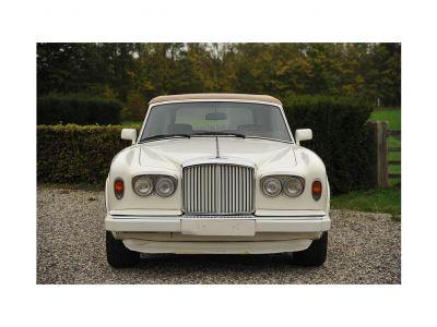 Bentley Continental Continental Cabrio - <small></small> 93.000 € <small>TTC</small> - #2