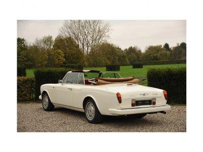 Bentley Continental Continental Cabrio - <small></small> 93.000 € <small>TTC</small> - #8