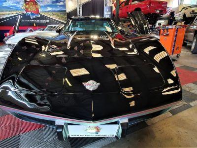 Chevrolet Corvette Rarissime : indy pace car 1978 l82 bm4 (1/202) - <small></small> 49.500 € <small>TTC</small> - #1