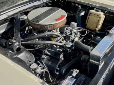 Ford Mustang 1964 1/2 coupe C - <small></small> 32.500 € <small>TTC</small> - #36
