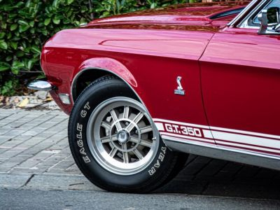 Ford Mustang SHELBY GT Fastback 350 1968 - Prix sur Demande