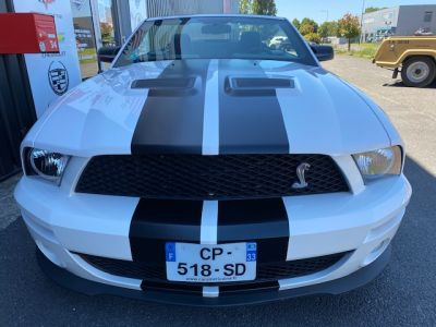 Ford Mustang SHELBY GT500 6500 KM - <small></small> 49.500 € <small>TTC</small>