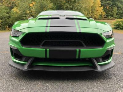 Ford Mustang SHELBY SUPER SNAKE V8 5.0L - <small></small> 174.900 € <small></small> - #3