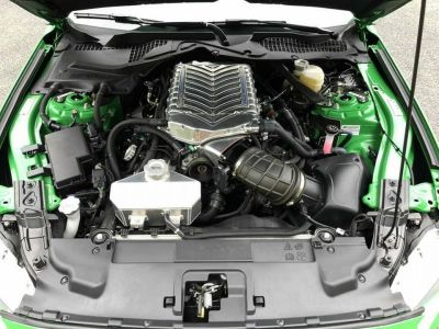 Ford Mustang SHELBY SUPER SNAKE V8 5.0L - <small></small> 174.900 € <small></small> - #9