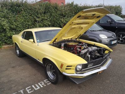 Ford Mustang V8 351ci 4V Code M 300ch - <small></small> 55.000 € <small>TTC</small> - #8