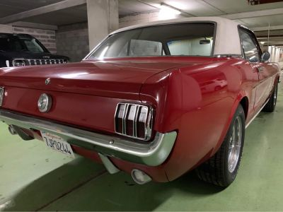 Ford Mustang V8 Coupé Hardtop Code C Interior Luxury - <small></small> 35.000 € <small>TTC</small> - #7