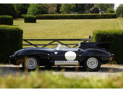 Jaguar D-Type D-Type - <small></small> 72.000 € <small>TTC</small> - #3