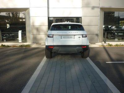 Land Rover Range Rover Evoque 2.0 TD4 150 Executive BVA Mark V - <small></small> 35.900 € <small>TTC</small> - #7