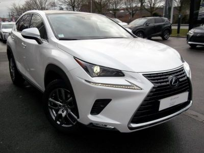 Lexus NX 300h 4WD Luxe MM19 - <small></small> 48.900 € <small>TTC</small>