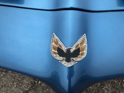 Pontiac FIREBIRD Formula 400 - <small></small> 37.500 € <small>TTC</small>