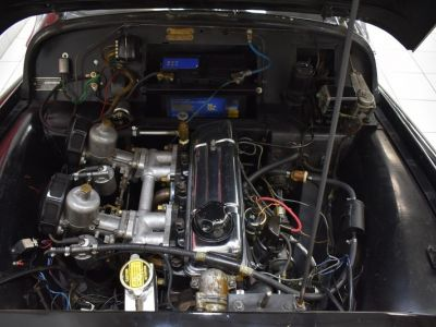 Triumph TR3 A Overdrive - <small></small> 39.900 € <small>TTC</small> - #10