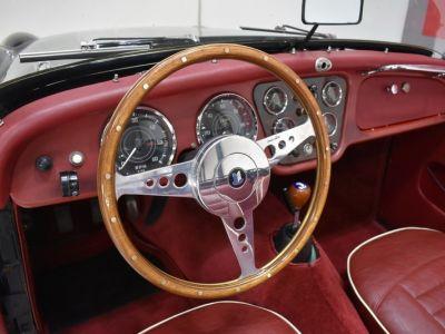 Triumph TR3 A Overdrive - <small></small> 39.900 € <small>TTC</small> - #37