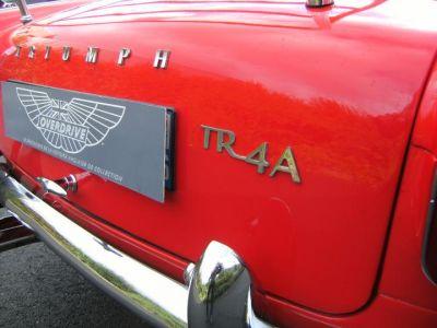 Triumph TR4 A - <small></small> 28.000 € <small>TTC</small> - #8
