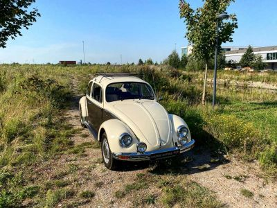 Volkswagen Coccinelle Kever TOPSTAAT - ORIGINEEL - OLDTIMER - <small></small> 7.900 € <small>TTC</small> - #6