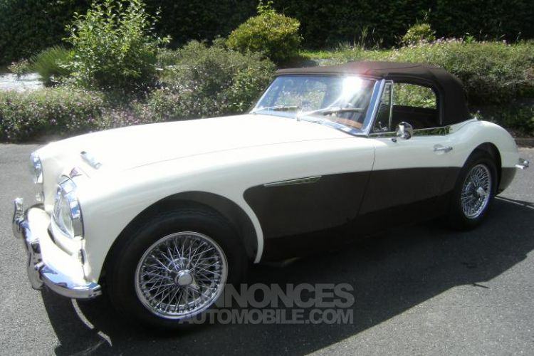 Austin Healey 3000 MK3 BJ8 - <small></small> 79.900 € <small>TTC</small> - #2