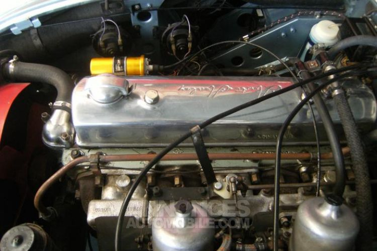 Austin Healey 3000 MK3 PHASE 2 BJ8 - <small></small> 59.900 € <small>TTC</small> - #18
