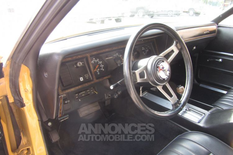 Plymouth Road runner Roadrunner - <small></small> 26.500 € <small>TTC</small> - #46