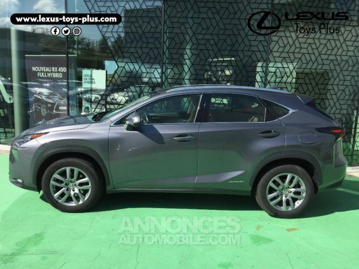 Lexus NX 300h 4WD Pack Business GRIS F Occasion - 2