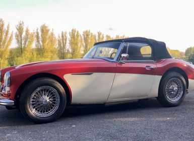 Austin Healey 3000 Mk3 (Phase 2) Occasion