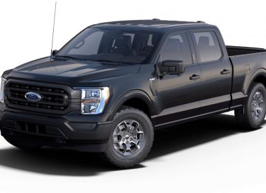 Achat Ford F150 PLATINIUM 2021 3,5 L V6 Ecoboost PAS ECOTAXE/PAS TVS/TVA RECUP Neuf