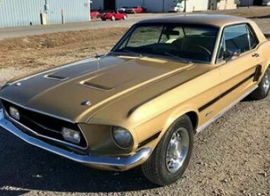Achat Ford Mustang HIGH COUNTRY Occasion