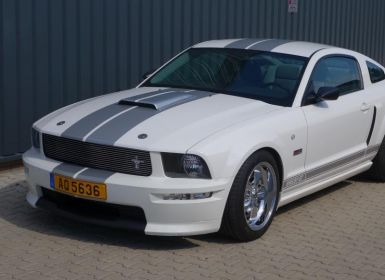 Achat Ford Mustang shelby GT 350 Occasion