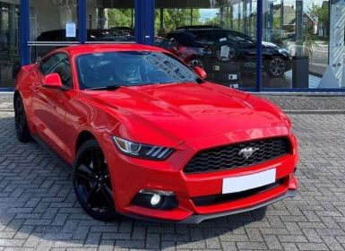 Vente Ford Mustang VI FASTBACK 2.3 Ecoboost 317 ch BVM 6 Occasion