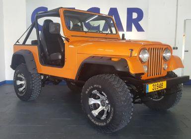 Achat Jeep CJ5 CJ 7 4.2l Occasion