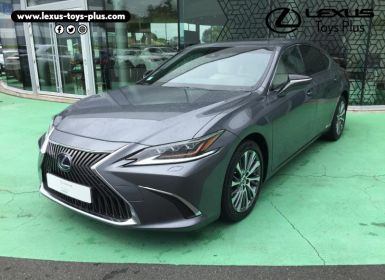 Vente Lexus ES 300h Luxe Occasion